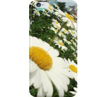 Daisy Day iPhone Case/Skin