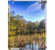 The Bulrush Pond iPad Case/Skin