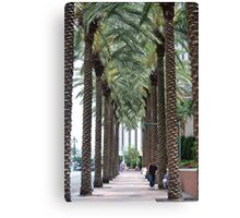 Towering Palms Canvas Print