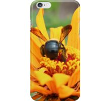 Bumble iPhone Case/Skin
