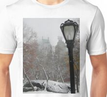 Central Park In Winter Unisex T-Shirt
