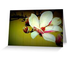 Magnolia - Lomo Greeting Card