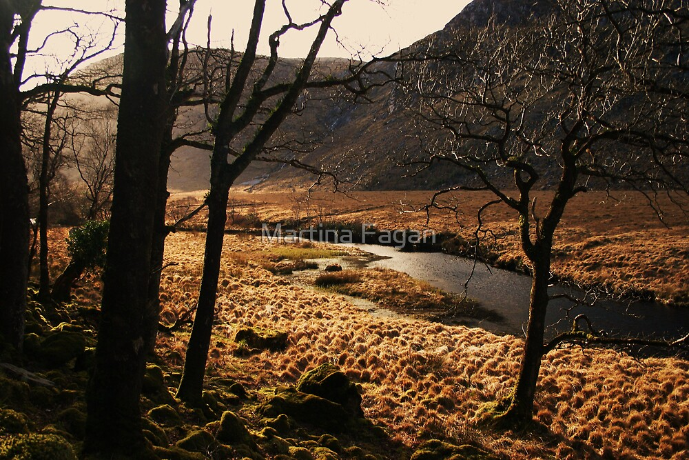 A walk in Donegal by Martina Fagan