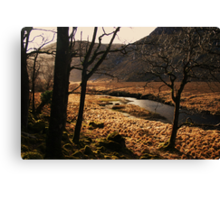 A walk in Donegal Canvas Print