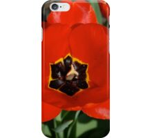 Seriously, Stop and Smell these Tulips iPhone Case/Skin