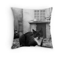Just cat Throw Pillow