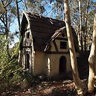 Little house Cooma #1 by Tom McDonnell