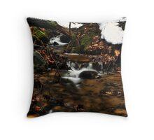 Wagner Falls Stream 4 Throw Pillow