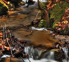 Wagner Falls Stream 5 by Chintsala