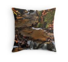 Wagner Falls Stream 5 Throw Pillow