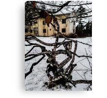 Abandoned Institution & Twisted Tree Canvas Print