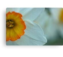 Flowerpot Canvas Print