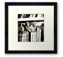 Kittens Inspired by Kittens Framed Print