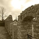 Old Wall by William Blair