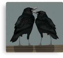 Two Lovely Crows Canvas Print