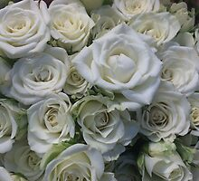 White Roses Floral Bouquet by silverdragon
