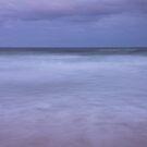 lavender sea by Sue Hammond