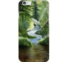 Woodland Stream Oil Painting iPhone Case/Skin