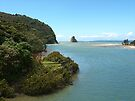 Where the river meets the sea.......Waiwera, New Zealand ! by Roy  Massicks