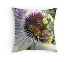 Close Up Of  Passion Flower with Honey Bee Throw Pillow