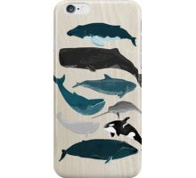 Whales - Pod of Whales Print by Andrea Lauren iPhone Case/Skin