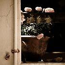 Neighbours pot  by sandy1984