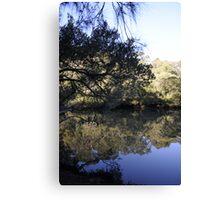 River Mirror Canvas Print