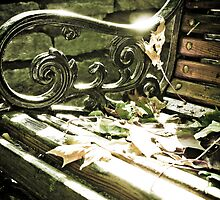 Bench in park by CerbeR2008