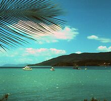 Whitsunday Passage by georgieboy98