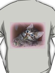My toy T-Shirt