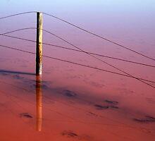 Salt Lake Fence by Steve Chapple