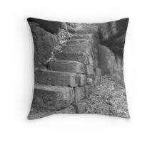 Convict Steps Throw Pillow