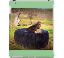 Watching for squirrels  iPad Case/Skin
