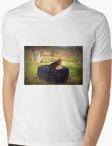 Watching for squirrels  Mens V-Neck T-Shirt