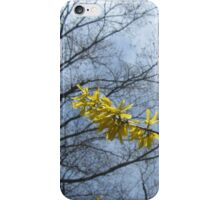 Spring Fling iPhone Case/Skin