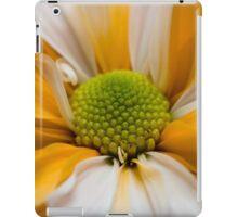 Orange Cream iPad Case/Skin