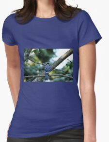 Singing The Blues - Blue Jay Womens Fitted T-Shirt