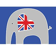 Brit Elephant Photographic Print