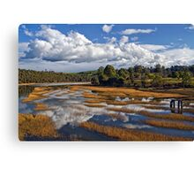 Rubicon Reflections Canvas Print
