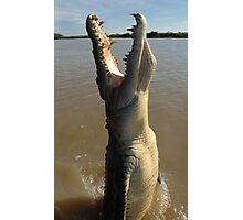 Jumping Crocodile Photographic Print