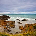 King Island inlet by Alexander Meysztowicz-Howen
