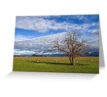 Rural Views in the Northern Midlands Greeting Card