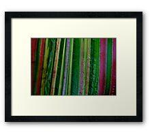 Coloured Maize Framed Print