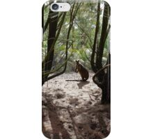 Young wallaby watching me iPhone Case/Skin
