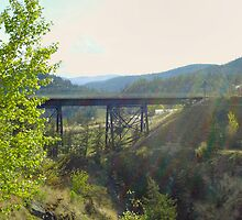 Kettle Valley Railraod Trestle by Gregory Ewanowich