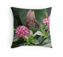 An eastern tiger swallowtail butterfly Throw Pillow