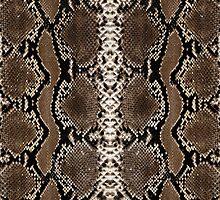 Snake Skin by chaosdivine