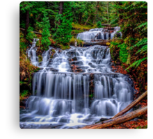 Beautiful Autumn day at Wagner Falls  Canvas Print