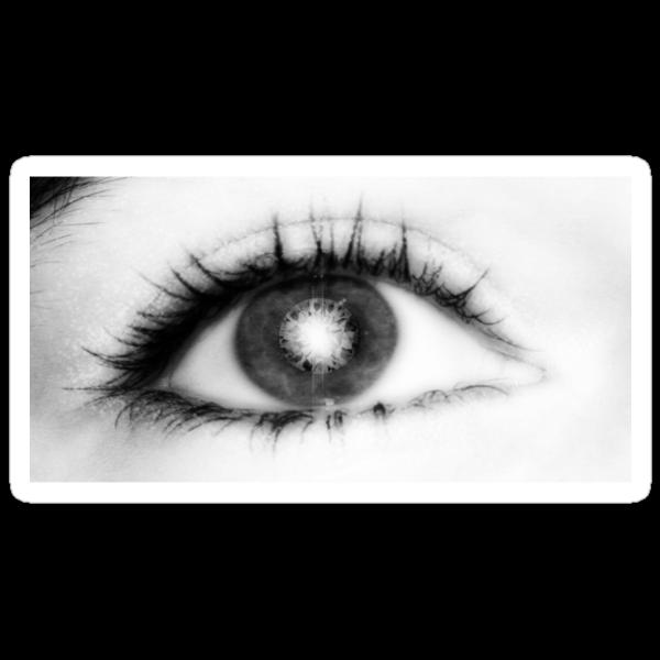 Eye by Jarede Schmetterer