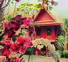 Jim Thompson's House, Bangkok, Thailand by vadim19